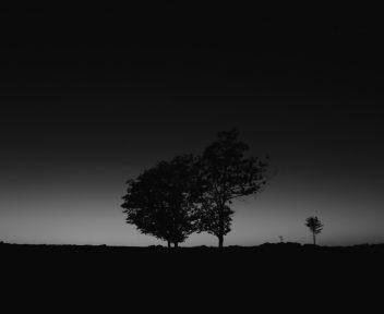 31 Landscapes