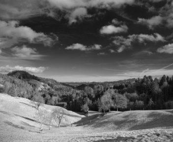 40-landscapes